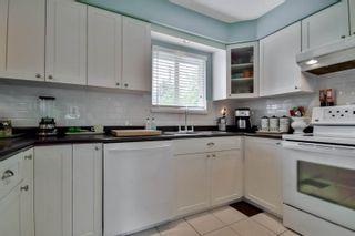 Photo 23: 20801 MCFARLANE Avenue in Maple Ridge: Southwest Maple Ridge House for sale : MLS®# R2065058