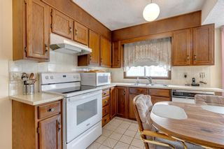 Photo 9: 147 Templevale Place NE in Calgary: Temple Detached for sale : MLS®# A1144568