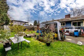 Photo 9: 32031 JOYCE Avenue in Abbotsford: Abbotsford West House for sale : MLS®# R2563177