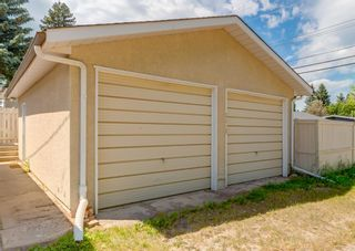 Photo 48: 5812 21 Street SW in Calgary: North Glenmore Park Detached for sale : MLS®# A1128102