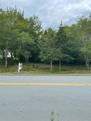 Photo 7: 329 Ross Road in Westphal: 15-Forest Hills Vacant Land for sale (Halifax-Dartmouth)  : MLS®# 202115290