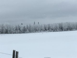 Photo 31: RR74 Twp 514: Rural Parkland County Rural Land/Vacant Lot for sale : MLS®# E4183435