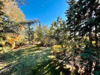 Photo 6: 12433 28 Avenue in Edmonton: Zone 16 House for sale : MLS®# E4265353