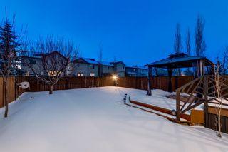 Photo 24: 560 Cougar Ridge Drive SW in Calgary: Cougar Ridge Detached for sale : MLS®# A1072318