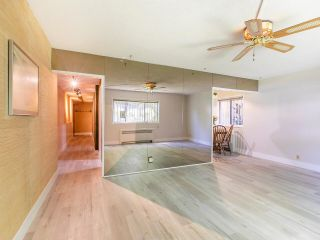 """Photo 9: 101 2880 OAK Street in Vancouver: Fairview VW Condo for sale in """"KINGSMERE MANOR"""" (Vancouver West)  : MLS®# R2597060"""