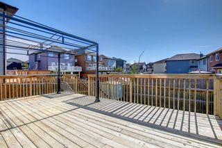 Photo 12: 89 SADDLELAND Close in Calgary: Saddle Ridge Detached for sale : MLS®# A1149993