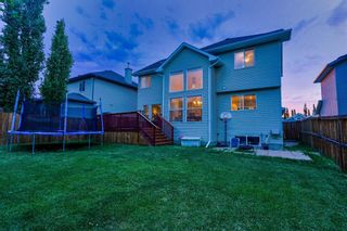 Photo 33: 259 WESTCHESTER Boulevard: Chestermere Detached for sale : MLS®# A1019850