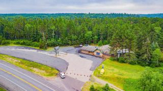Photo 26: LK283 Summer Resort Location in Boys Township: Retail for sale : MLS®# TB212151