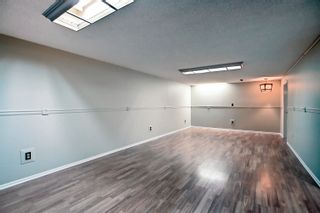 Photo 22: 14231 30 Street in Edmonton: Zone 35 House for sale : MLS®# E4261642