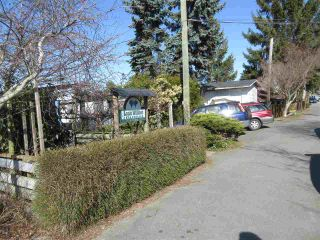 Photo 11: 4559 W RIVER Road in Delta: Port Guichon House for sale (Ladner)  : MLS®# R2535862